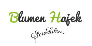Blumen Hajek Logo