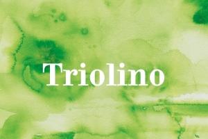 Triolino