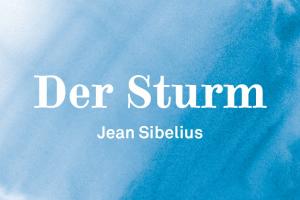 Der Sturm II